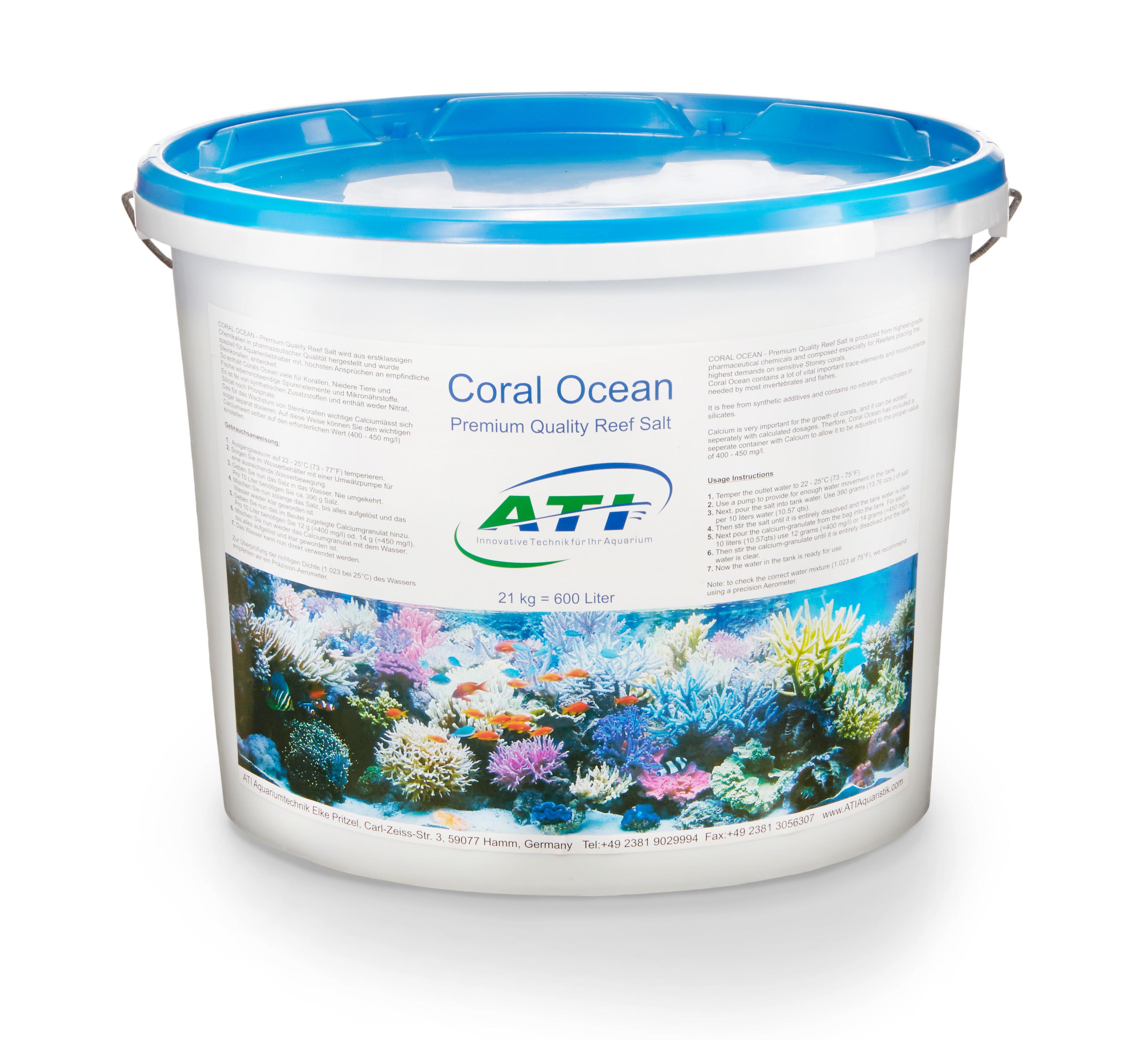Coral Ocean 21
