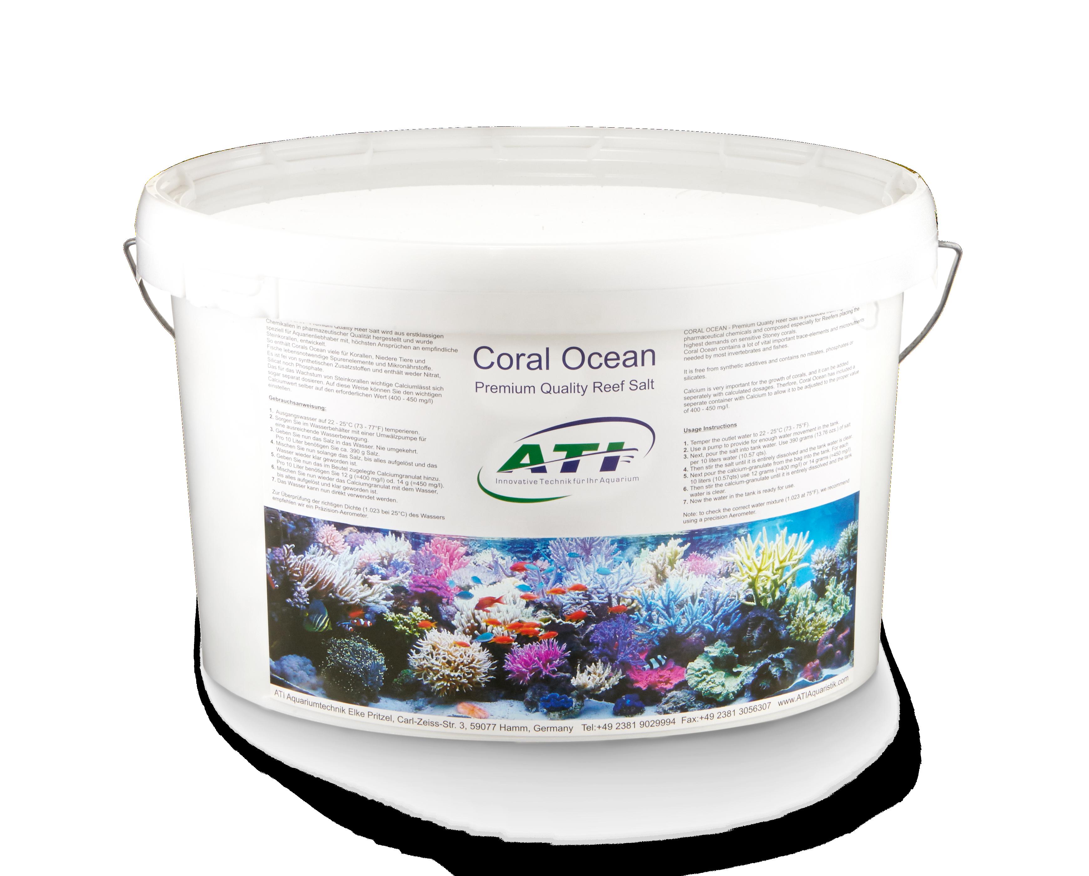 Coral Ocean 5