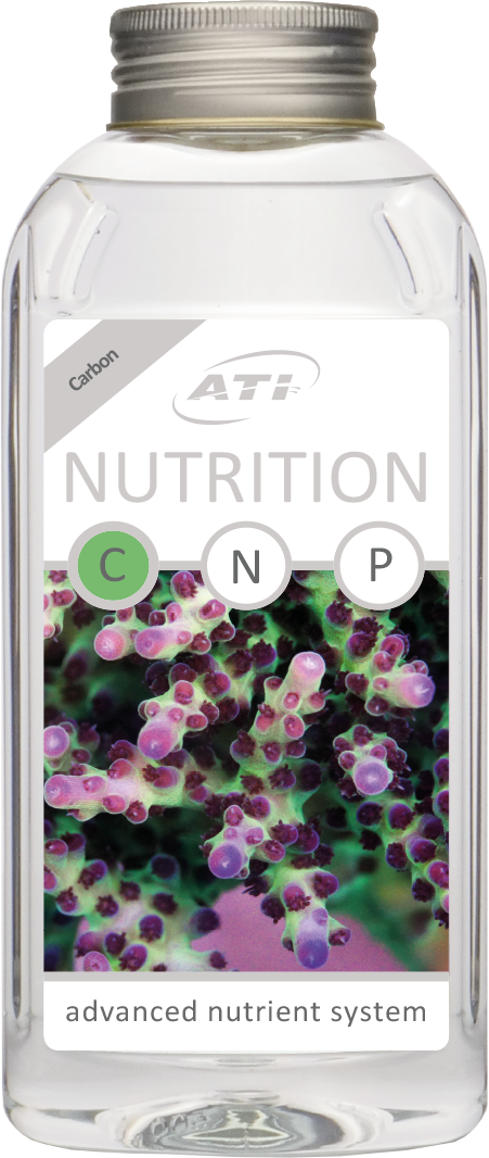 Nutrition C
