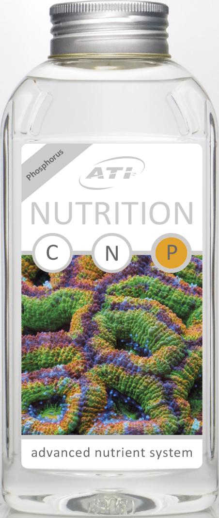 Nutrition P